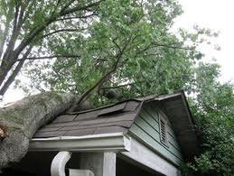emergency roofing services dfw